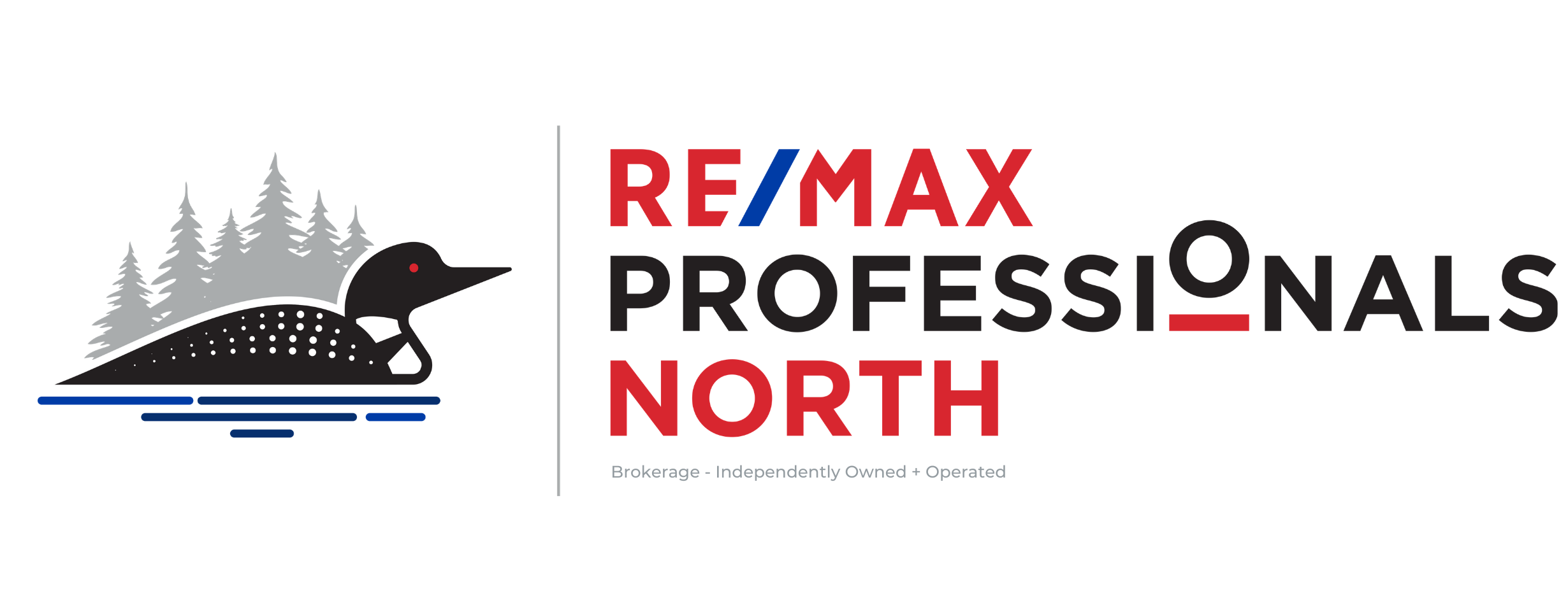 RE/MAX Professionals North logo