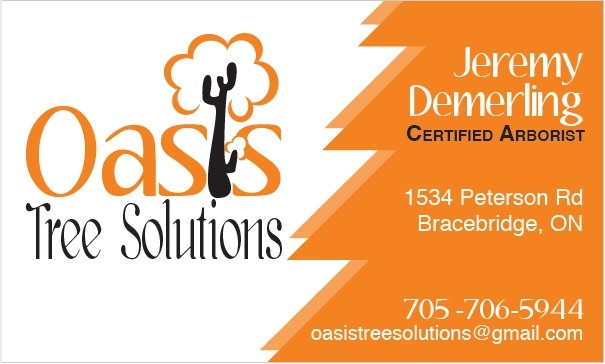 Oasis Tree Solutions logo